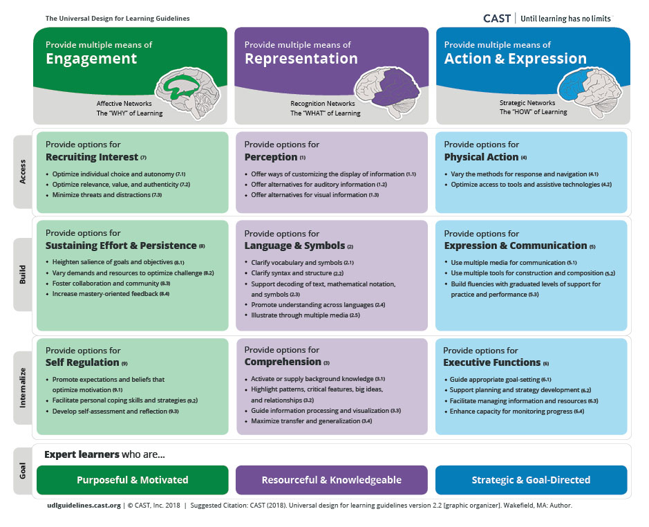 """The UDL Guidelines are set up in columns (principles, left to right: engagement, representation, action & expression) and rows (top to bottom: access, build, internalize) with the goal of UDL (expert learners). Principle: Provide multiple means of engagement. Illustration of a brain with the center of the brain highlighted to show the affective networks: the """"WHY"""" of learning. Guideline: Provide options for recruiting interest. Checkpoints: Optimize individual choice and autonomy, Optimize relevance, value, and authenticity, Minimize threats and distractions. Guideline: Provide options for sustaining effort and persistence. Checkpoints: Heighten salience of goals and objectives, Vary demands and resources to optimize challenge, Foster collaboration and community, Increase mastery-oriented feedback. Guideline: Provide options for self regulation. Checkpoints: Promote expectations and beliefs that optimize motivation, Facilitate personal coping skills and strategies, Develop self-assessment and reflection. Principle: Provide multiple means of representation. Illustration of a brain with the back of the brain highlighted to show the recognition networks: the """"WHAT"""" of learning. Guideline: Provide options for perception. Checkpoints: Offer ways of customizing the display of information, Offer alternatives for auditory information, Offer alternatives for visual information. Guideline: Provide options for language and symbols. Checkpoints: Clarify vocabulary and symbols, Clarify syntax and structure, Support decoding of text, mathematical notation, and symbols, Promote understanding across languages, Illustrate through multiple media. Guideline: Provide options for comprehension. Checkpoints: Activate or supply background knowledge, Highlight patterns, critical features, big ideas, and relationships, Guide information processing and visualization, Maximize transfer and generalization. Principle: Provide multiple means of action & expression. Illustration of a brain with t"""